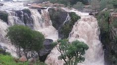 Ncandu Falls, Newcastle, South Africa Amazing Places, The Good Place, Waterfall, Travel, Outdoor, Outdoors, Trips, Traveling