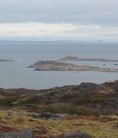 View of the island of Saint-Pierre. Saint-Pierre and Miquelon were liberated by the Free French Navy on Christmas Day, 1941.