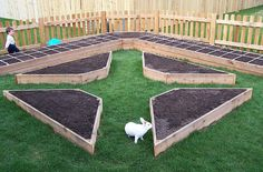 Why do raised garden beds have to be square? I love the rabbit, usually a garden nuisance, in the midst of this picture.