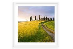 Tuscan Dawn Tuscany 20 on OneKingsLane.com