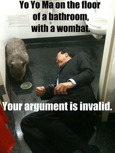 Yo Yo Ma on the floor of a bathroom with a wombat