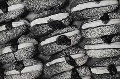 Doughnuts by Peter Peryer Geometric Photography, Space Photography, Artistic Photography, Senior Photography, Photography Ideas, Auckland Art Gallery, Fill The Frame, Kiwiana, Still Life Photographers
