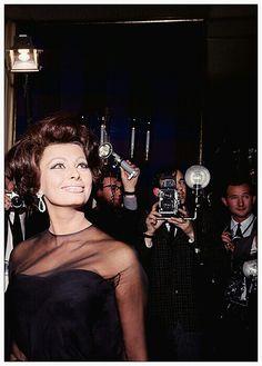 Sophia Loren Δ