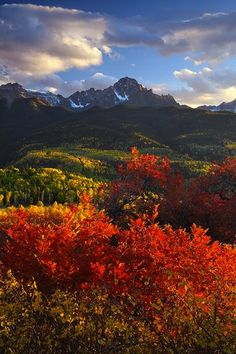 Beautiful and we are in the San Juan Mountains! Sneffels, San Juan Mountains, by Fine Art Nature Photographs. Beautiful World, Beautiful Places, Beautiful Pictures, All Nature, Amazing Nature, Wyoming, To Infinity And Beyond, Belle Photo, Beautiful Landscapes