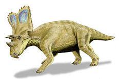 Chasmosaurus BW.jpg