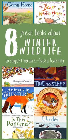 These eight great books pair nicely with the Wonderkin Winter Wildlife Box and provide the perfect jumping off point for hours of winter wildlife-inspired nature study and outdoor exploration! Nature Based Preschool, Nature Activities, Preschool Books, Book Activities, Nature Story, Outdoor Classroom, Little Learners, Childrens Books, Kid Books