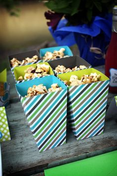 Homemade blueberry kettle popcorn. The Everyday Posh: Posh Picnic Blueberry Picking Party