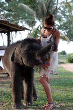 i want a baby elephant