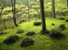 Kyoto : Saihoji / Kokedera (Temple des mousses) |vivrelejapon.com