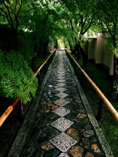 I love this pathway - I want to make this (Kouetuji temple in Kyoto,Japan)