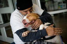 Titus, el perro que no puede parar de abrazar a su verdadero padre cuando vuelve al refugio para recogerlo: #titus #perro #perros #animales #animal #refugio #noticia #noticias #mascota #mascotas #schnauzi #austin #texas #eeuu #estadosunidos #schanuzi #protectora