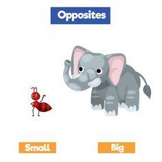 Opposites For Kids, Opposites Preschool, Toddler Learning Activities, Preschool Activities, Library App, Maths Paper, Opposite Words, School Template, Teaching Humor