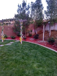 Backyard Hd fullshot