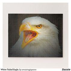 White Tailed Eagle. Jigsaw Puzzle