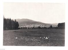 Foto Böhmen Schattawa Eleonorenhain Lenora Zátoň - Personen auf d. Wiese 1925 | eBay