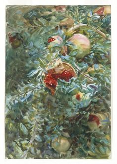 Pomegranites by John Singer Sargent. (Watercolor on paper. 1908. Brooklyn Museum of Art.)