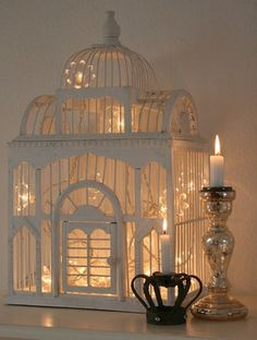 christmas lights in a bird cage