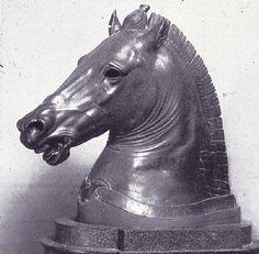 Testa di cavallo Medici Riccardi, #Firenze, #MAF Horses, Animals, Animales, Animaux, Animal, Animais, Horse
