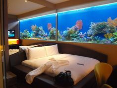 hotel room with large aquarium inside as walls in H20 hotel in Manila