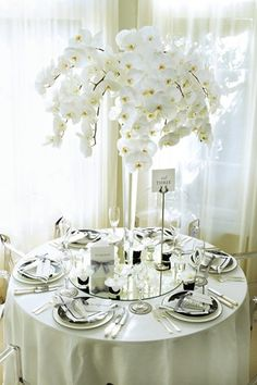 Beautiful white orchids for white wedding decorations idea All White Wedding, Floral Wedding, Wedding Bouquets, Our Wedding, Wedding Flowers, Orchid Centerpieces, Orchid Arrangements, White Orchid Centerpiece, Centrepieces