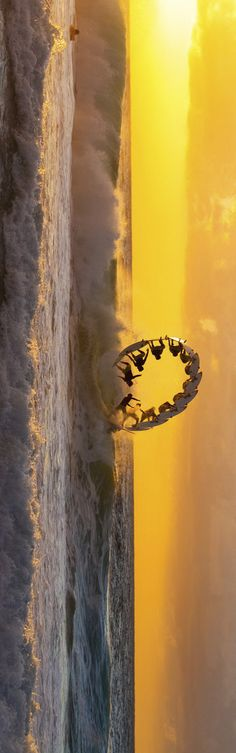 Tilt your head time. This is and amazing sequence shot of a backflip.