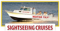 Charleston Water Taxi | Ferry Service, Dolphin Watch & Sightseeing Cruises