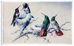 Printing Primer & Instant Art Project - Hummingbirds - The Graphics Fairy