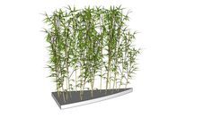 Large preview of 3D Model of Artificial Indoor Bamboo Grove