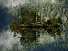 #остров #река #природа #лес #туман #природамира #природа_мира #forest #мир #красота #красиво #отдых #путешествие #фото #фотография #photo #photoofday #フォト #自然 #nature #pic #picoftheday #beautiful #pretty #landscape #небо by npupoga_mupa
