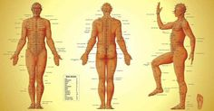 Shiatsu Massage – A Worldwide Popular Acupressure Treatment - Acupuncture Hut Meridian Acupuncture, Acupuncture Benefits, Acupuncture Points, Acupressure Points, Acupressure Mat, Acupressure Therapy, Acupressure Treatment, Meridian Points, Mudras