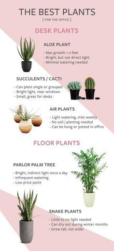 Plants office design home decor 60 Ideas for 2019 #plants