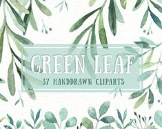 Ad: Green Leaf Watercolor clipart by everysunsun on The set of high quality hand painted watercolor leaves and elements images in bright and fresh color palette. Watercolor Plants, Watercolor Leaves, Watercolor And Ink, Butterfly Watercolor, Watercolor Design, Watercolor Wedding, Business Illustration, Pencil Illustration, Graphic Illustration