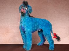 A poodle creatively groomed to look like Eeyore from Winnie the Pooh - he definitely has the sad eyes going