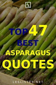 Asparagus is one of the healthiest foods you can eat. With that in mind, check out the top 47 asparagus quotes. #asparagus People Quotes, Me Quotes, Healthiest Foods, Vanilla Greek Yogurt, Food Facts, Nature Quotes, Eating Well, Asparagus, Green Beans