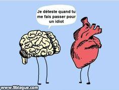 Conversation entre le cerveau et le coeur