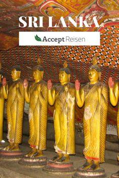 Sri Lanka Tour ins Hochland - Diese 5-tägige Reise führt in kompakter Zeit zu einer Vielfalt an faszinierenden Eindrücken. Amazing Destinations, Travel Destinations, Native Country, Packing List For Travel, Group Travel, Travel And Leisure, Asia Travel, Where To Go, Travel Guides