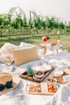 A picnic proposal complete with a stunning vineyard setting. Picnic Dinner, Garden Picnic, Picnic Date, Backyard Picnic, Beach Picnic, Picnic Parties, Outdoor Parties, Night Picnic, Picnic Lunches