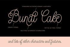 Bundt Cake Script (Intro Price) by Up Up Creative on Creative Market