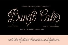 Bundt Cake Script (Intro Price) by Up Up Creative on Creative Market