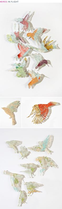 Art Roundup: Birds by Claire Brewster.  Pinned under glass.  These are so beautiful. I wonder if I could make them myself?