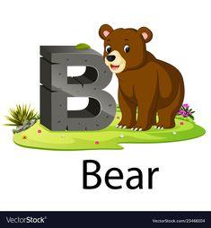 Zoo animal alphabet b for bear vector Happy Birthday Animals, Animal Birthday, Zoo Animals, Cute Animals, Teedy Bear, Halloween Logo, Alfabeto Animal, Camping Crafts For Kids, Kids Reading Books