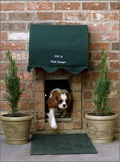 pet door brick wall - Google Search