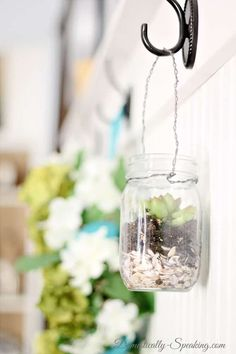 Hanging Fresh Herbs in Vintage Blue and Green Mason Jars - perfect way to have an indoor herb garden in your kitchen! Mason Jar Succulents, Succulent Pots, Succulents Garden, Succulent Ideas, Colorful Succulents, Green Mason Jars, Hanging Mason Jars, Hanging Herbs, Hanging Succulents