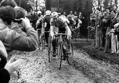 cadenced:  Sean Kelly on thepavé at the Paris-Roubaix. Thanks to Velominati for the photo