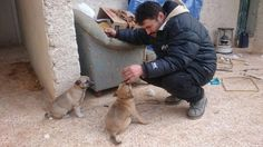 """WHAT LOVE LOOKS LIKE: After leaving Aleppo, Mohammad Alaa Aljaleel """"The Cat Man of Aleppo"""", has found new friends in Idlib."""