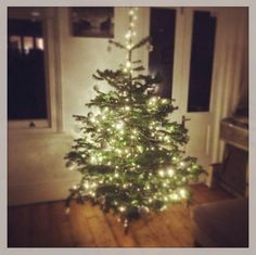 Thanks to @captaindanks on Twitter for sending in his entry for the #ClaphamTree competition!