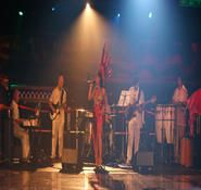Our Brazilian themed stage band can be hired in London and the UK. Entertainment Ideas, Samba, Dancers, Rio, Stage, Entertaining, London, Traditional, Band