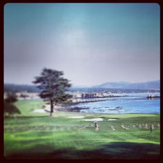 Everyone must play Pebble Beach once in their life