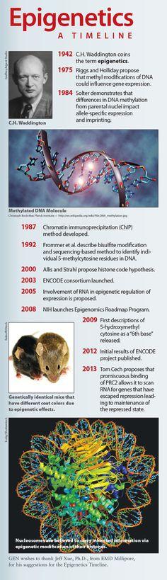 Epigenetics: A Timeline
