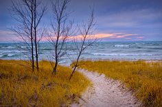 Trail to the Beach on the Sand Dune at Lake by RandyNyhofPhotos